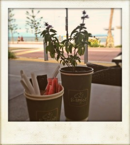 Redcliffe cafe
