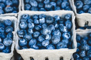 blueberry punnet at sydney farmers market