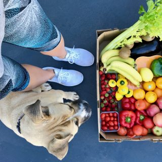 dog girl fruit box vegetables fruit rainbow