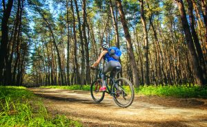 The Best Places for Mountain Biking in Canberra