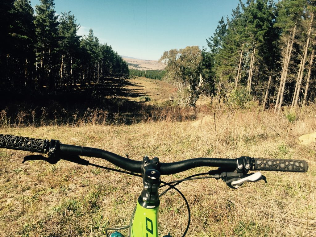 Mt Stromlo mountain biking in Canberra views and best trails from bike handles