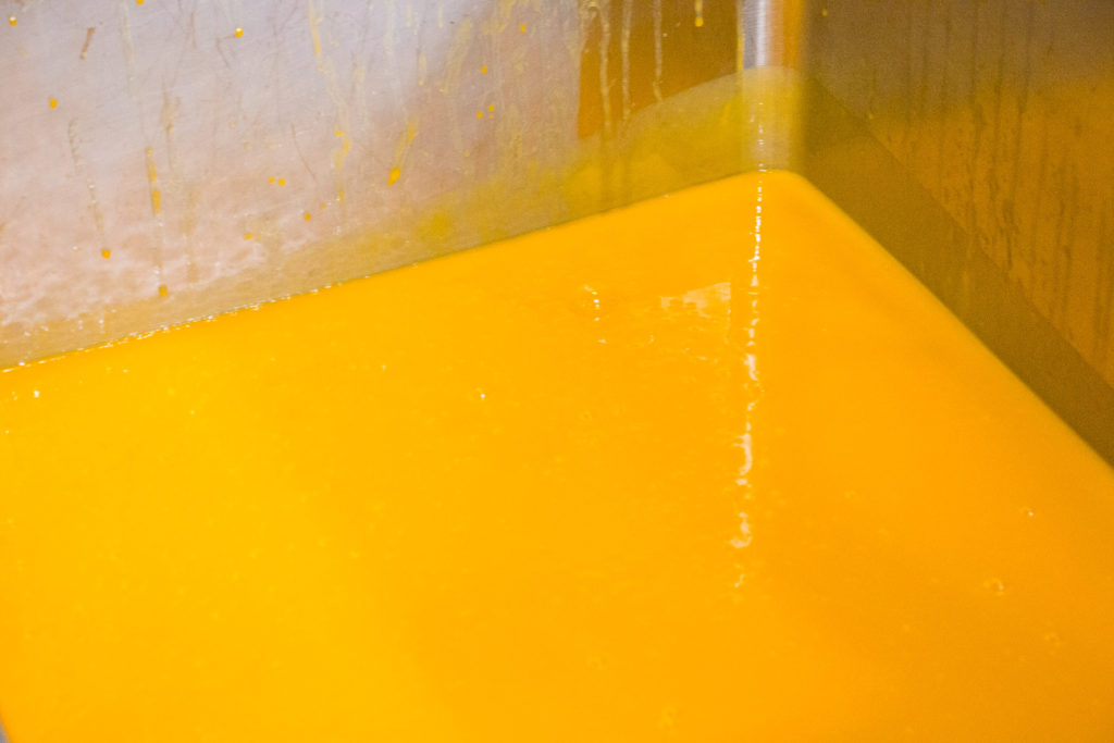 heinz infant food factory making baby food puree mango